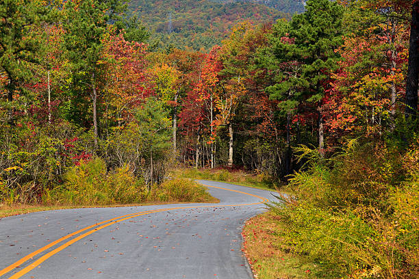 Curve in the Road Gorges State Park Road in North Carolina during the fall north carolina us state stock pictures, royalty-free photos & images