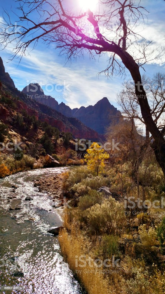 Curve in Virgin River with The Watchman peak in background along the Pa'rus Trail and view of Red rocks of Zion National Park near Springdale Utah stock photo