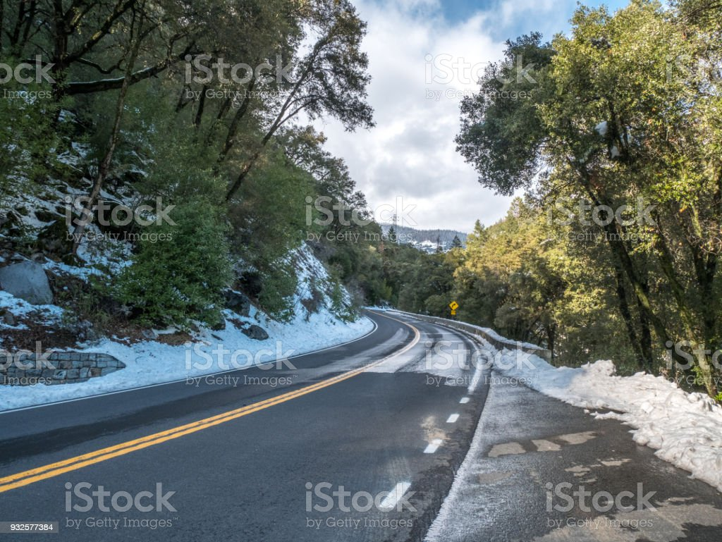Curve Turning Left and Right Through Dense Forest stock photo