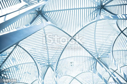 110921829istockphoto Curved arch ceiling 184872059