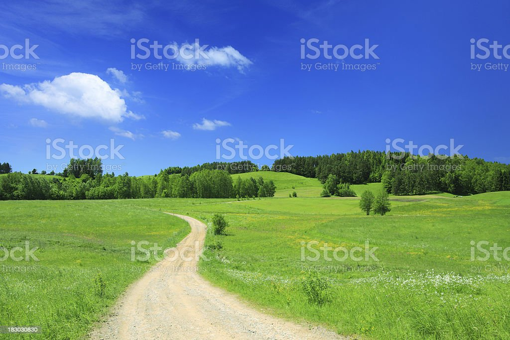 Curved country road and green fields - Landscape royalty-free stock photo