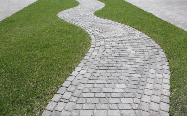curved path in the shape of a wave on the grass in the park. paved with tiles of different shapes. - zona pedonale struttura creata dall'uomo foto e immagini stock