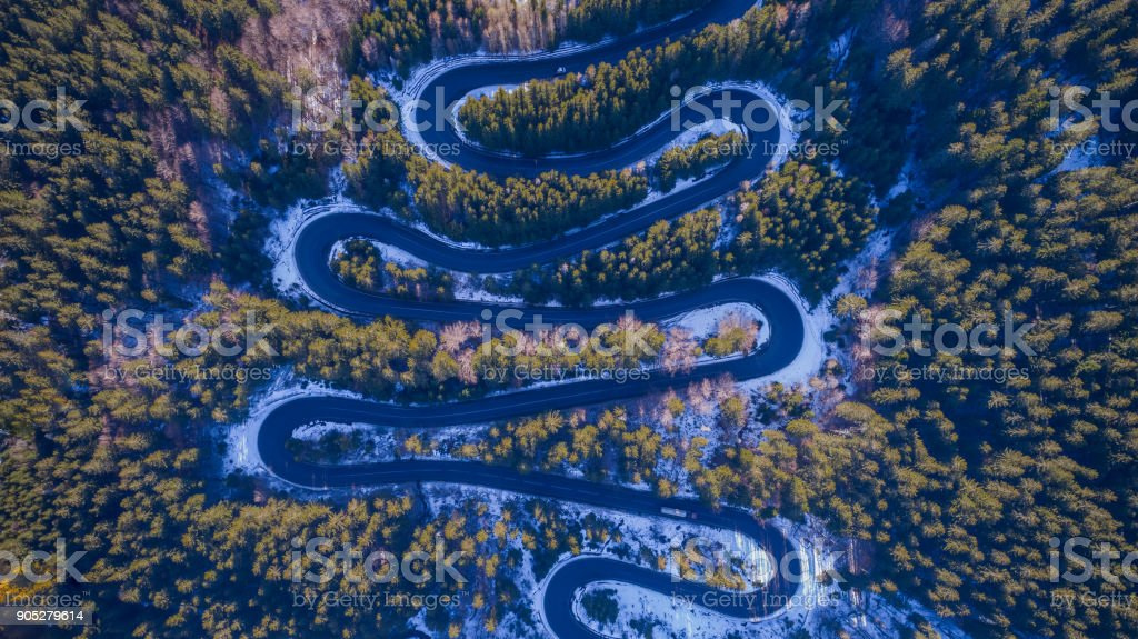 Curved road trough the forest stock photo