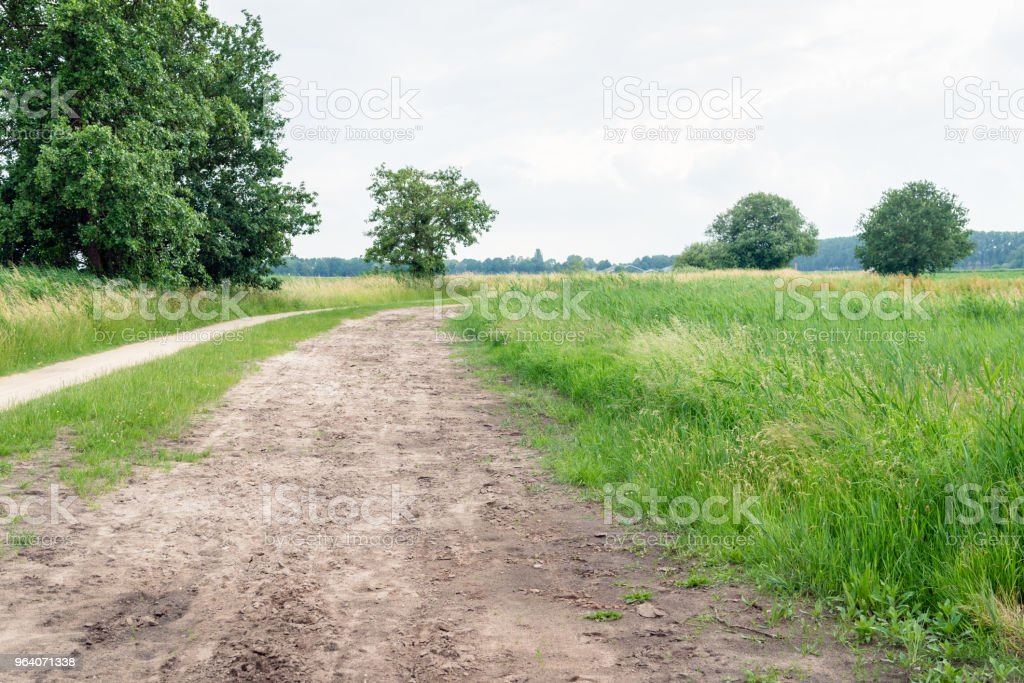 Curved sandy path in a Dutch nature reserve - Royalty-free Agricultural Field Stock Photo