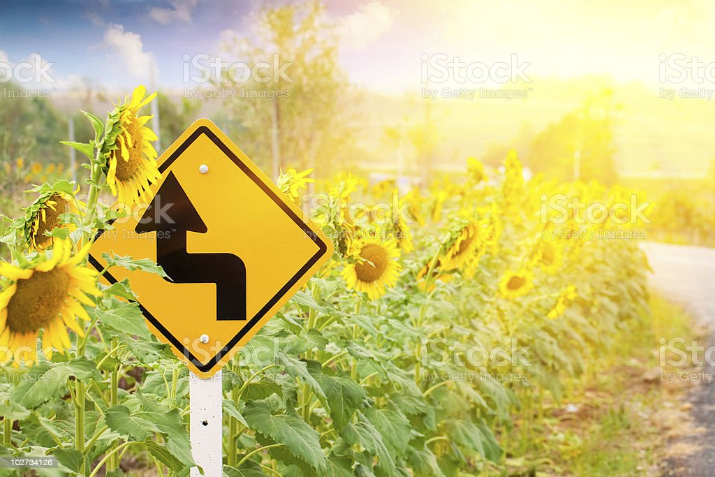 Curves Ahead royalty-free stock photo