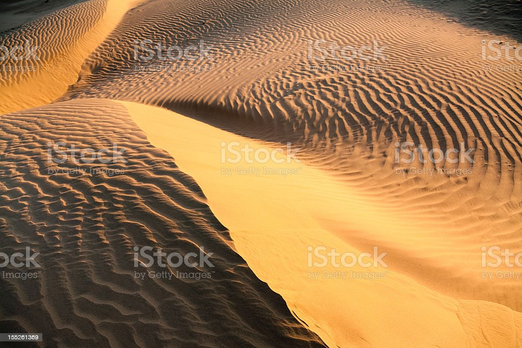 Curves in the Dunes stock photo