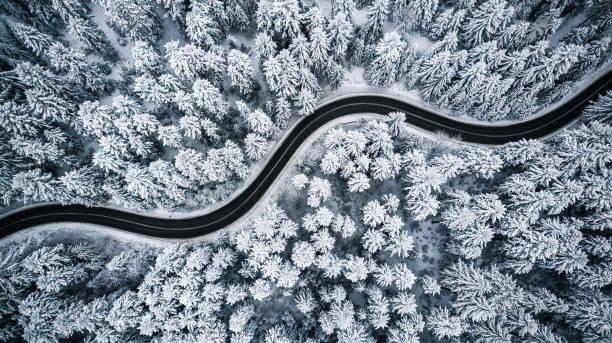 curvy viento de nieve cubierto bosque, de arriba abajo vista aérea - vía fotografías e imágenes de stock