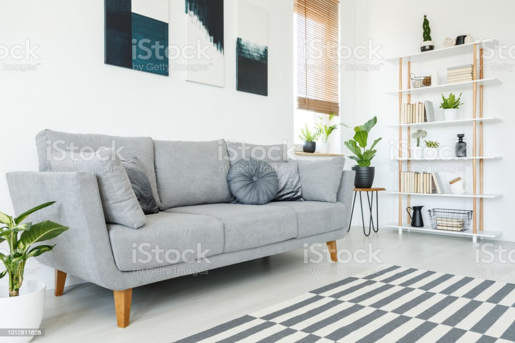 Superb Cushions On Grey Couch And Carpet In Minimal Living Room Alphanode Cool Chair Designs And Ideas Alphanodeonline