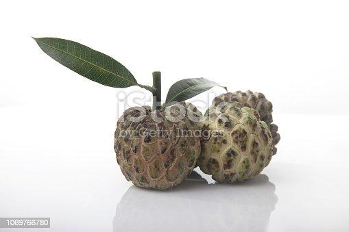 Custard apple isolated on white background,annona