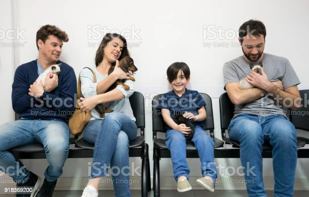 Customers at a veterinarian practice sitting at the waiting room each picture id918369200?b=1&k=6&m=918369200&s=612x612&h=vpgwkburqkmb8 kwxiypocu3mebktbeuh wuuktmbw8=