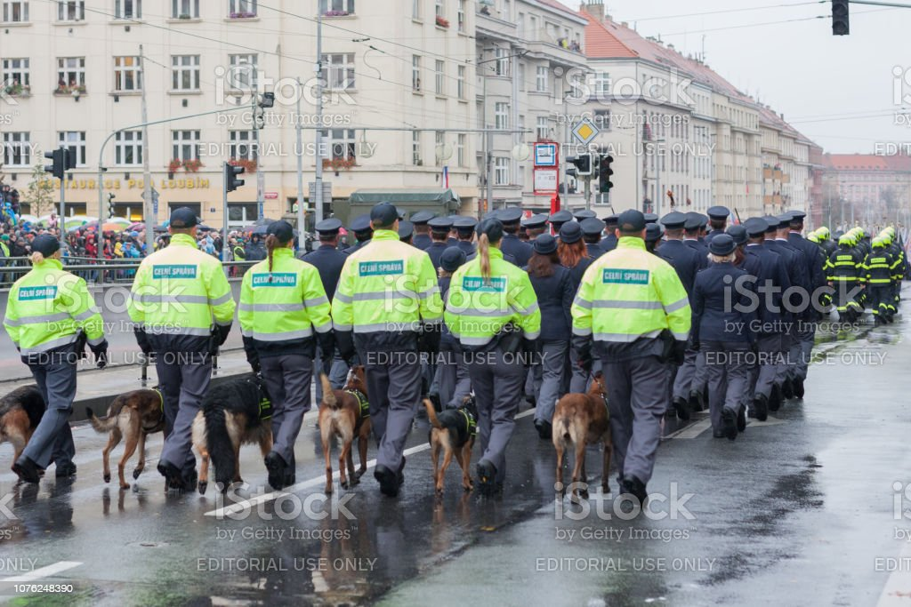 Customs officers with service dogs are marching on military parade stock photo