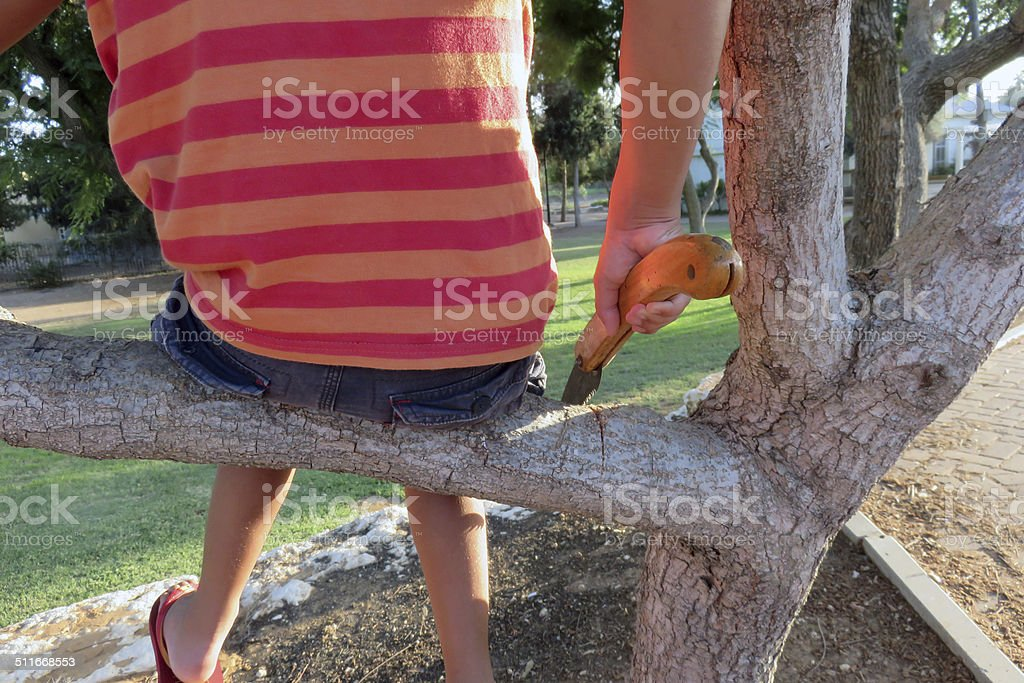 Cut branch stock photo