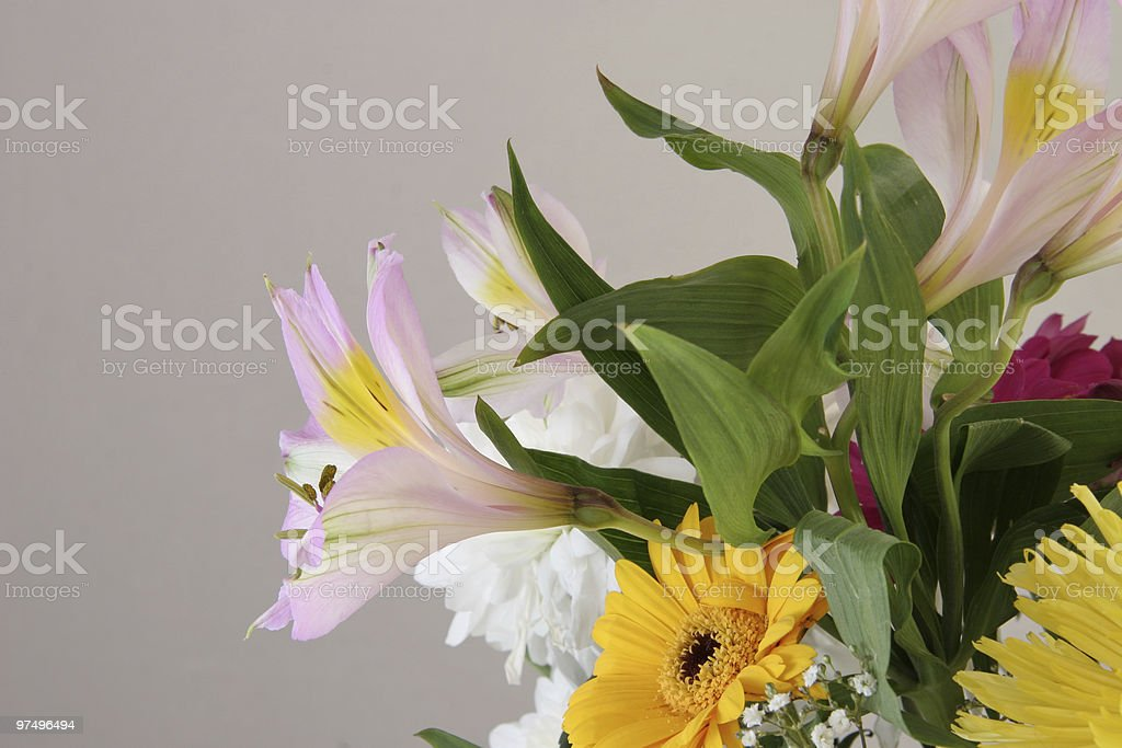 cut flowers in a bouquet royalty-free stock photo