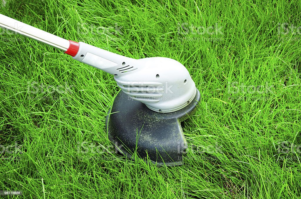 Cut Grass royalty-free stock photo