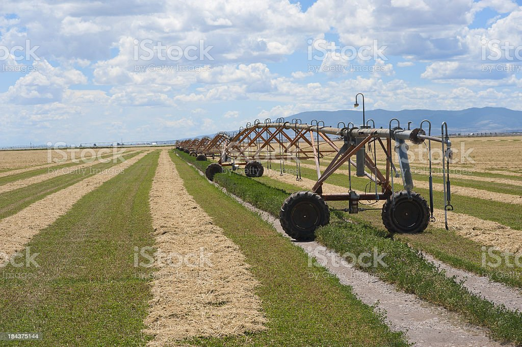 Cut Hay Field and Irrigation Equipment stock photo