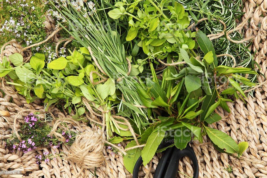 Cut herbs royalty-free stock photo
