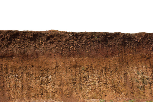 A cut of soil with different layers visible