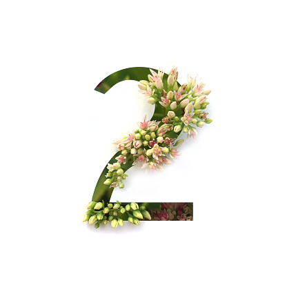 Cut out number 2 (two) with growing plant inside. Part of the alphabet.