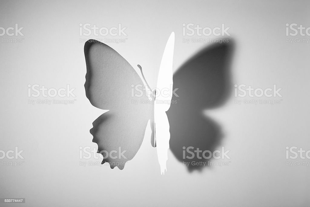 Macro photography of a butterflly shape cutted into a white sheet of...
