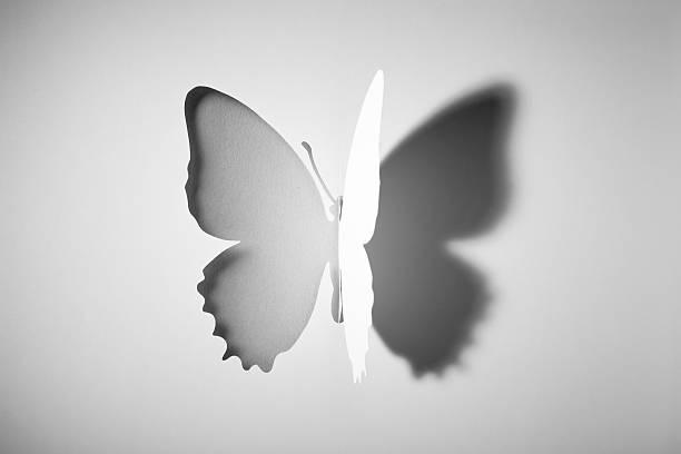 Cut out paper buttlerfly picture id533774447?b=1&k=6&m=533774447&s=612x612&w=0&h=3qmw9maa2 kvyarmccf6xeqae zkcizfo8lelowabji=