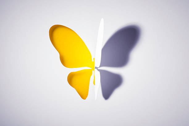 Cut out paper yellow buttlerfly picture id534223713?b=1&k=6&m=534223713&s=612x612&w=0&h=neo pdwfdhwtbwrjihcqraziomwuirkceqo2bupjudc=