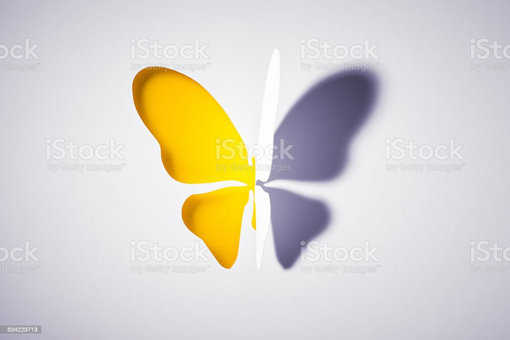 Cut out Paper Yellow Buttlerfly stock photo