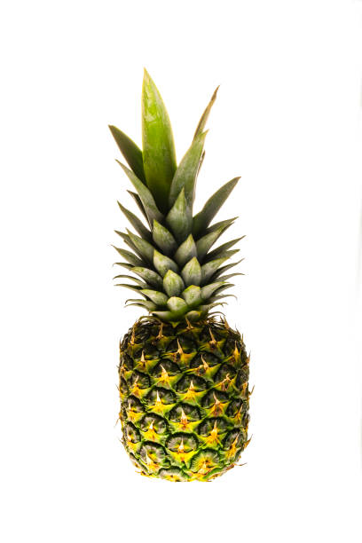 cut out pineapple on white background stock photo