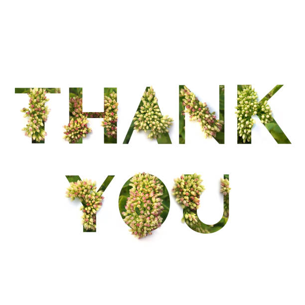 Cut out word thank you with growing plant inside picture id1138313735?b=1&k=6&m=1138313735&s=612x612&w=0&h=k 7tblzo98 q7c7iymqq6qwknfskxg8q4kbz6xgt l8=