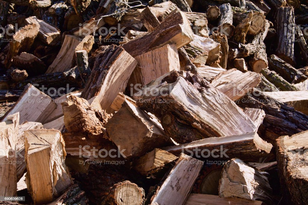 Cut Split Oak stock photo
