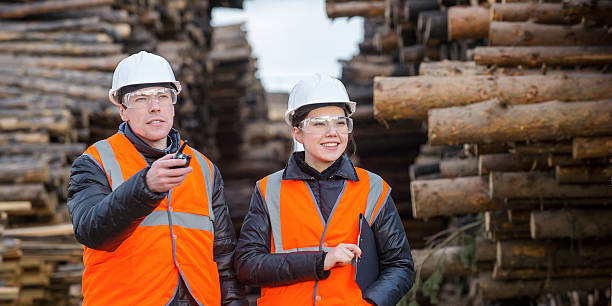 Cut trees and workers Two workers with cut trees on the backgound forester stock pictures, royalty-free photos & images