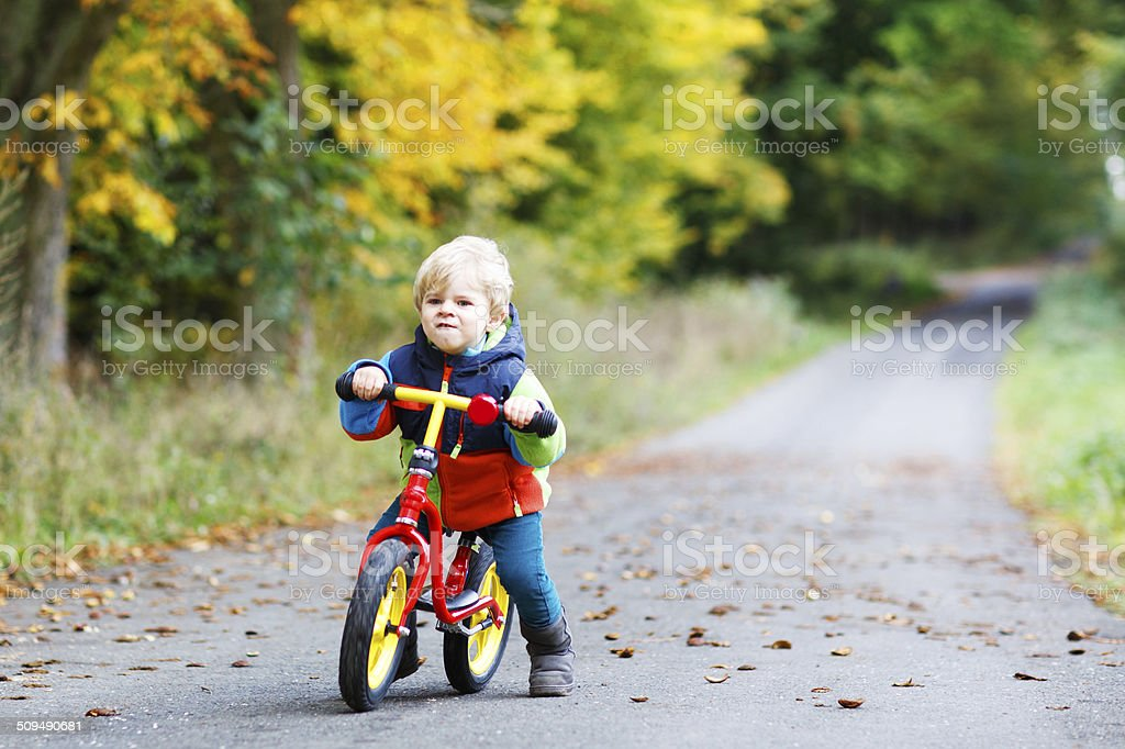 Cute active little boy driving on his bike autumn forest stock photo