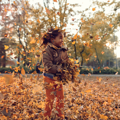 Happy African American little girl having fun in autumn park and playing with leaves.