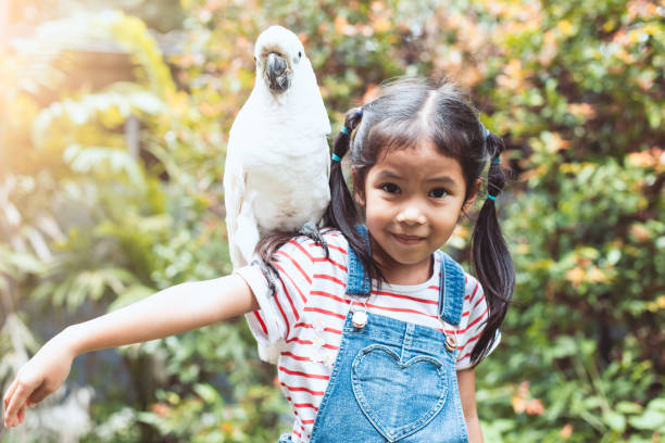 cute asian child girl with beautiful macaw parrot in her shoulder in the zoo - zoo stock pictures, royalty-free photos & images