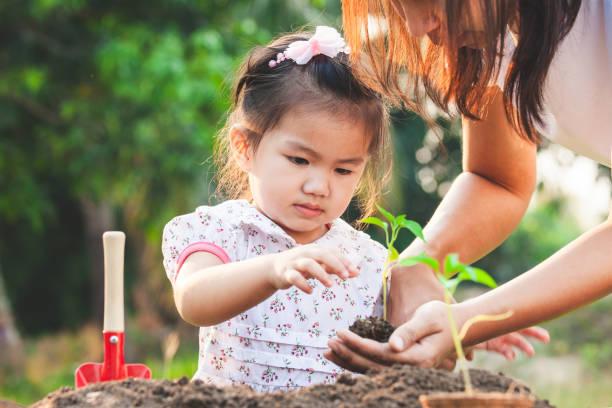 Süße asiatische kleine Kind Mädchen und Eltern Pflanzen junge Sämlinge in den schwarzen Boden zusammen im Garten – Foto
