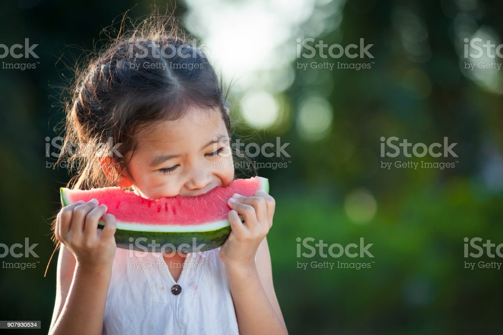 Cute asian little child girl eating watermelon fresh fruit in the garden stock photo