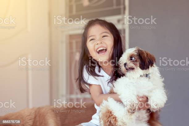 Cute asian little girl with her shih tzu dog in vintage color tone picture id688376708?b=1&k=6&m=688376708&s=612x612&h=b5tbhoobbsa3zwquc srijiqnpdlbfojrl9rfmbv0ec=
