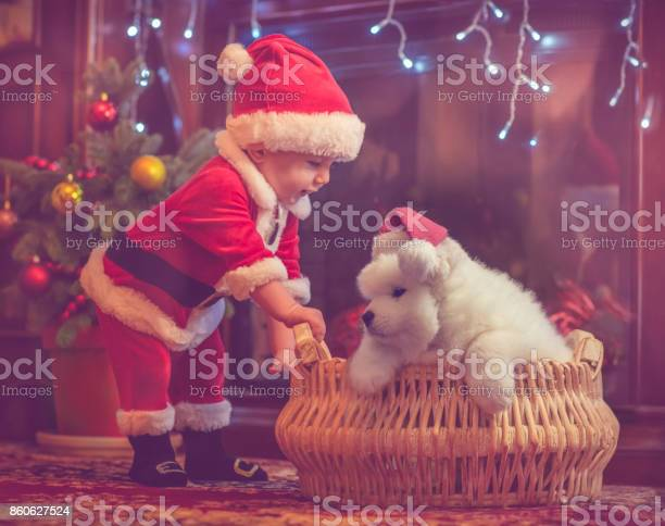 Cute baby boy and puppy in christmas picture id860627524?b=1&k=6&m=860627524&s=612x612&h=c6gsfzj2f7coijosqf4r9ymh2m9sz m746rcxhnb8ii=