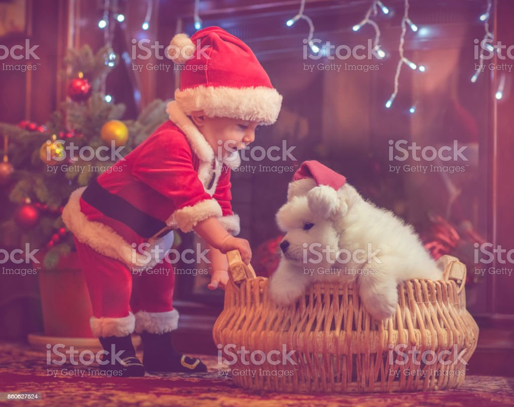 Cute baby boy and puppy in Christmas stock photo