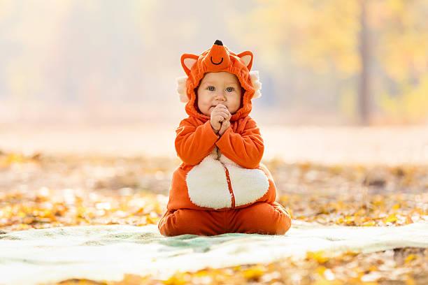 Cute baby boy dressed in fox costume stock photo