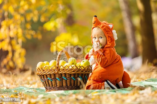 istock Cute baby boy dressed in fox costume 494447396