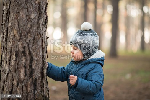 Toddler, baby boy, child, playing outside in a park, forest, looking at tree with curiosity, learning about nature.