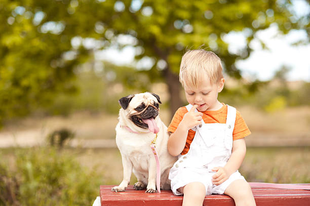 Cute baby boy sitting with dog stock photo
