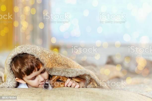 Cute baby embracing and sleeping under wool blanket picture id853078054?b=1&k=6&m=853078054&s=612x612&h=ila3x5zdfxg3zqxbadk89u7dnnnvobqfagyabymkp2e=