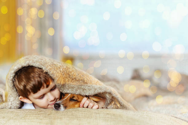 Cute baby embracing and sleeping under wool blanket stock photo
