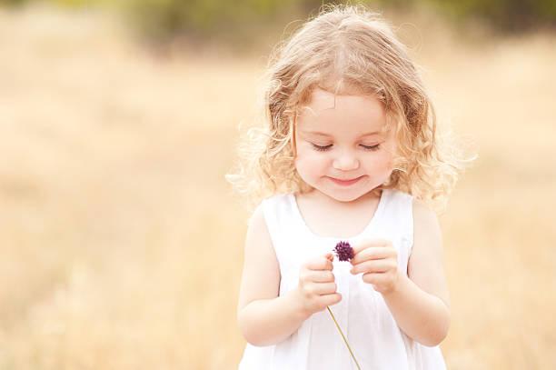 cute baby girl playing with flower - beyaz elbise stok fotoğraflar ve resimler
