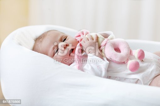 istock Cute baby girl playing with plush animal toy 641876866