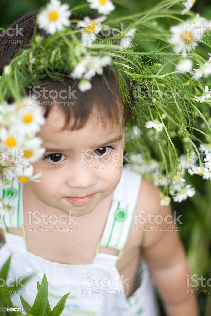 cute baby in a daisy wreath royalty-free stock photo