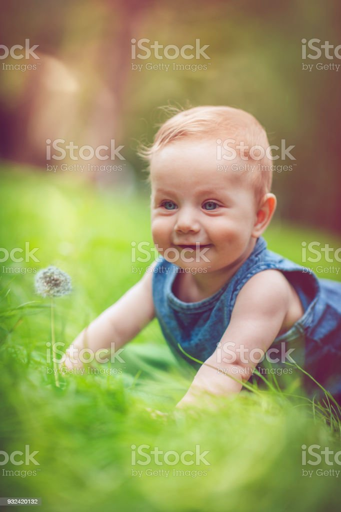 Cute Baby Laying on the Grass stock photo