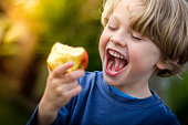 close up of 5 year old blonde child with mouth open about to take a bite of an apple
