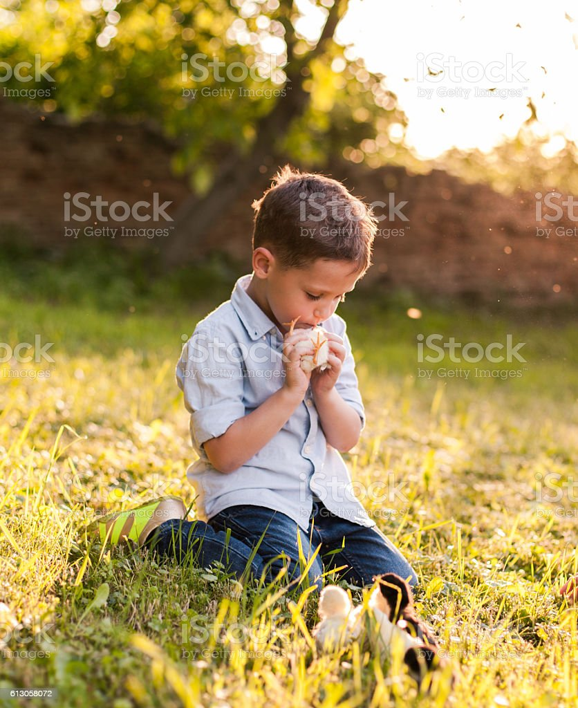 cute boy and baby chicks the boy kissing bird stock photo & more